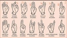 Mudra Miracles - Types and Benefits of Mudras for Healing Chakra Meditation, Kundalini Yoga, Pranayama, Osho, Gyan Mudra, Hand Mudras, Rapper Quotes, Eminem Quotes, Namaste Yoga