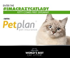 Enter to win a 3 month supply of @bestcatlitter and 1 year of Petplan pet insurance. Hurry! Ends 7/15 at 12 midnight CDT!