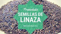 Interesante aplicaciones medicinales de las semillas de linaza para nuestra salud.