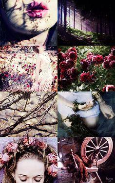 Dark Fairytale принцесс | Спящая красавица в терновом венце и кровавых роз, сильванских королевы, ее красота затемняет ее как серебряные нитей прялкой, усыпанном каплями золота, носит ее цветение, как кровавое Bejeweled ножом. Она...