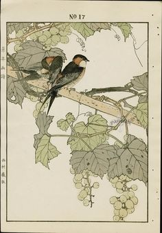 Картинки по запросу White Prunus, 1834. Yamamoto Baiitsu (Japanese, 1783–1856)