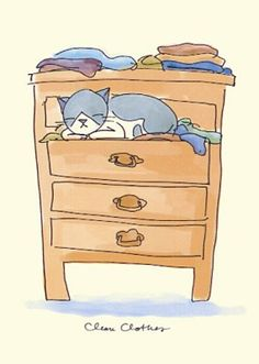 clean clothes ♥   (anita jeram)