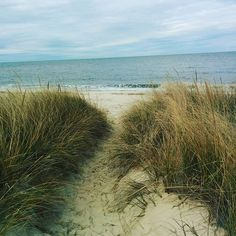DANTA alumni travel a LOT! This is a photo from alumna, Lisa, taken along the Delaware Bay at the New Jersey shore.  Where are you traveling?? Leave a comment here.  #travel #explore #world #immerse #culture #appreciate #bay #nj #jerseyshore #beach #sand #ocean #beauty #holiday #alumni #students #traveler #DANTAisms #DANTA