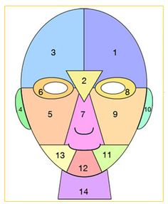 Facial mapping.  Why your face breaks out in certain places.