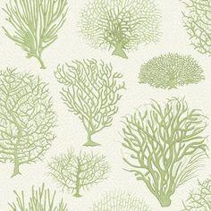 Cole and Son Seafern Wallpaper - Curio Fern Wallpaper, Wallpaper Samples, Wallpaper Online, Print Wallpaper, Wallpaper Roll, Bathroom Wallpaper, Cole Son, Subtle Background, Cole And Son Wallpaper