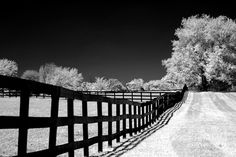black and white landscape  leading lines, movement
