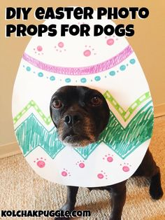DIY Easter Photo Props For Dogs | Make Your Dog an Egghead
