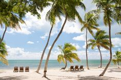 Lounge on the beach at the Moorings in #Islamorada, #Florida