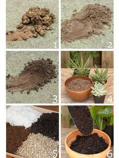 Types of Soil - Garden soils and potting mixes differ and should not be used interchangeably. Any soil can be improved, so customize to create a plant-perfect blend. Here's the lowdown on common types of soils and potting mixes. 1. Clay, 2. Sand, 3. Silt, 4. Cacti and Succulent Mix, 5. Premium Mix, 6. All-Purpose Mix