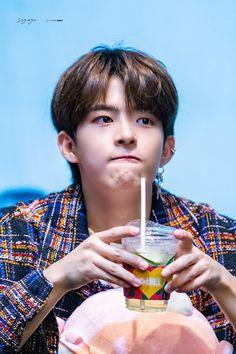Alice, Fans Cafe, Korean Celebrities, Cute Anime Guys, Extended Play, Asian Boys, K Idols, South Korean Boy Band, Boy Groups