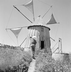 Famous Pictures, Old Pictures, Old Photos, Vintage Photos, Nostalgic Pictures, Vernacular Architecture, Algarve, Windmill, Portuguese