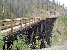 Myra Canyon Park (Kelowna) - 2018 All You Need to Know Before You Go (with Photos) - TripAdvisor Things To Do In Kelowna, Canada North, Canyon Park, What To Do Today, Future Travel, Canada Travel, Go Outside, Day Trip, British Columbia
