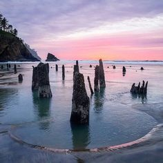 Neskowin, Oregon, is home to one of the most fascinating ghosts forests in the nation; it's petrified wood. Oregon Vacation, Oregon Road Trip, Oregon Trail, Vacation Spots, Oregon Coast Roadtrip, Oregon Forest, Oregon Beaches, Greece Vacation, Vacation Places