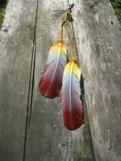REALLY OVER feathers but these are pretty, I'd hang them in my bedroom somewhere.