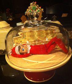 Silly elf!