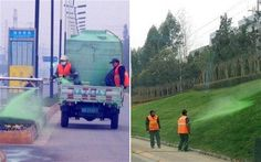 Chinese workers spraying the grass green in Chengdu
