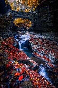 Autumn in Watkins Glen