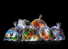 Urban River of 2000 Plastic Bags Hold Actual Fish (by Luzinterruptus)