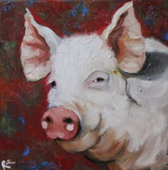 Pig - a picture for a kitchen