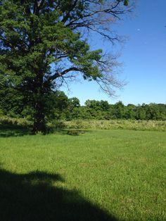 Deer Path Park in Readington, NJ