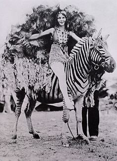 unspooled Vintage  Lady on a ZEBRA.