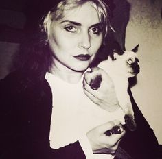 Debbie Harry and Siamese cat.