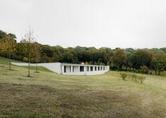 Fayland House, un ejercicio de mimetismo en las colinas del sur de Inglaterra - despiertaYmira