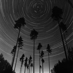 "Saatchi Art Artist Andrey Kulpin; Photography, ""Dome"" #art"