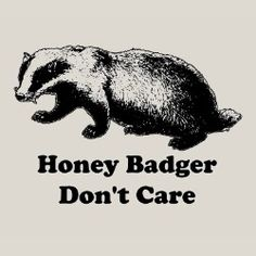 honey badger don't give a shit! (in case you missed the video: http://youtu.be/4r7wHMg5Yjg)
