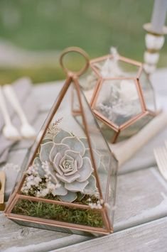 a cute copper terrarium with moss, wildflowers and a pale succulent is a chic and stylish wedding centerpiece idea - Weddingomania Succulent Table Decor, Succulent Wedding Centerpieces, Terrarium Centerpiece, Terrarium Wedding, Floral Centerpieces, Glass Terrarium, Succulent Terrarium, Centrepieces, Centerpiece Ideas