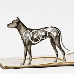 watchdog Cut Book illustrations New Cut Book illustrations by Thomas Allen