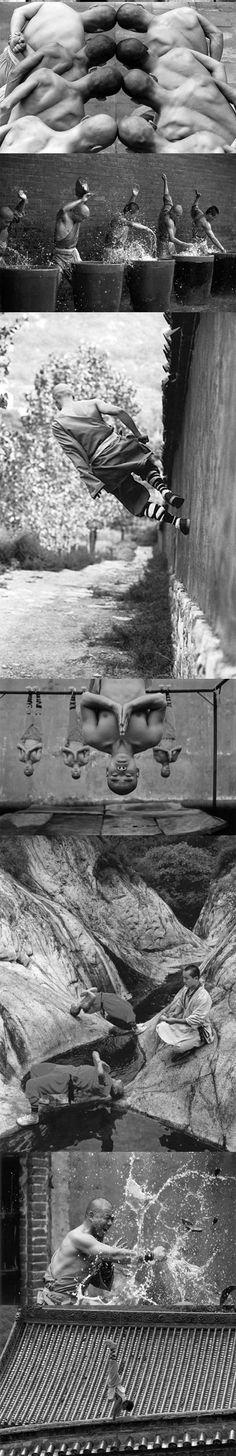 Sights and Strangers: funny-Shaolin-monks-training-martial-arts-head
