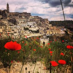 The coolest, ancient cave town in Basilicata. MATERA!! My favourite place in Italy hands down. ️ Discovered by Emma McEvoy at Sassi di Matera, #Matera, #Italy #travel