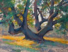 Old Growth by Robert Rohm Pastel ~ 14 x 18