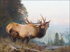 Who Is The Greatest Elk Artist That Ever Lived? - Wildlife Art Journal