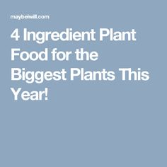 4 Ingredient Plant Food for the Biggest Plants This Year!