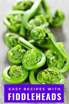 Wondering how to cook fiddleheads? These wild plants are super healthy but also tasty. Found in forests in northeast North America the fiddlehead fern is a wild edible plant Learn how to clean fiddleheads, as well as how to cook them properly so they aren't poisonous as they need to be steamed, boiled, or blanched first. #fiddleheads #ferns #spring #forage #foraging #wildfoods #wildedibles #sauteed #soups #wildfood Easy Vegetable Recipes, Vegetarian Recipes Easy, Quick Dinner Recipes, Side Dish Recipes, How To Cook Fiddleheads, Easy Summer Meals, Easy Meals, Horseradish Cream