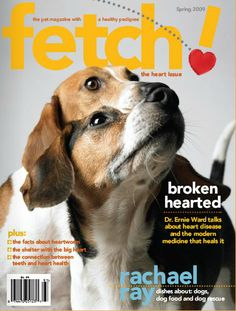 Petplan #pet-insurance delves into issues of the heart in our Heart issue of fetch! magazine, featuring facts about heartworm, the connection between teeth and heart health, and an interview with pet parent and celebrity chef, Rachael Ray!