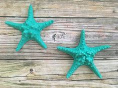 Amazon.com: Large Colorful Starfish Wall hanging, 8 inch Sea Star beach Home Decoration: Handmade Starfish Wall Decor, Bath Remodel, Nautical, Easy Diy, Turquoise, Sea, Wall Hangings, Frames, Friday