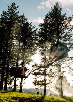 Escape to Bro-topia // NYT // Foster Huntington was an up-and-comer in the New York fashion industry. Then he ditched it all and built his own personal paradise in the sky. Foster Huntington, Survival Courses, Cool Tree Houses, Crazy Houses, Forest Bathing, Landscaping Software, Cinder, In The Tree, The Fosters