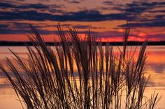 Golden Lake, Ontario.  This gorgeous image was taken from the banks of Golden Lake on the property belonging to The Sands.  I couldn't pass up this spectacular sunset while we were there shooting a wedding.  What a beautiful location for a wedding!  http://www.sandsongoldenlake.com/