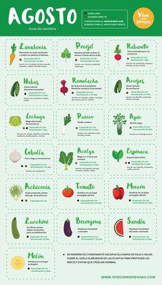 Herb Garden Planter, Eco Garden, Fruit Garden, Vegetable Garden Planning, Home Vegetable Garden, Growing Greens, Growing Plants, Farm Gardens, Outdoor Gardens
