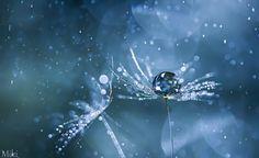Falling Pearls von Miki Asai auf 500px