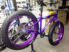 Purple fat bike.