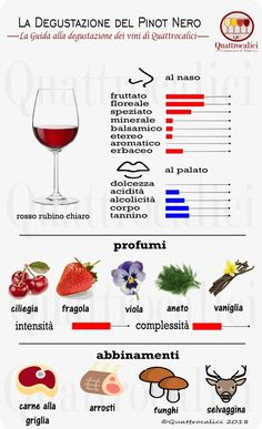 Impariamo a degustare il Pinot nero su Quattrocalici. Wine Drinks, Alcoholic Drinks, Cocktails, Wine Party Appetizers, White Wine Spritzer, Wine Tasting Party, Wine Guide, Wine Wednesday, Cheap Wine