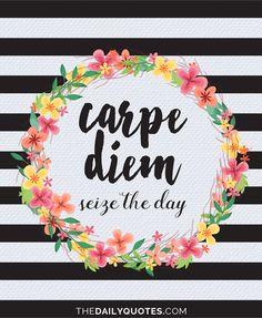 Carpe diem. Seize the day. thedailyquotes.com