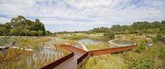 Galería de Proyecto de reutilización de agua del Parque de Sydney / Turf Design…