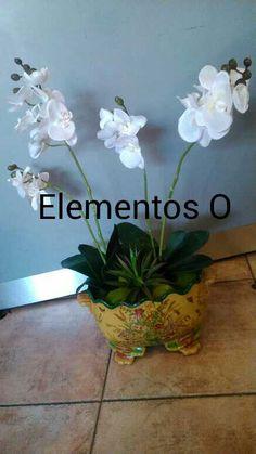 Elegante arreglo de orquídeas blancas con sculent.  No imports el estilo de tu decoración