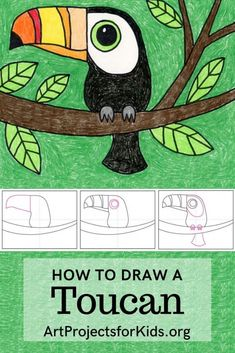Draw a Toucan · Art Projects for Kids Drawing Lessons For Kids, Easy Drawings For Kids, Art Lessons, Easy Drawings For Beginners, Drawing For Children, Drawing Ideas Kids, Easy Art For Kids, Drawing Tutorials For Kids, Art Kids