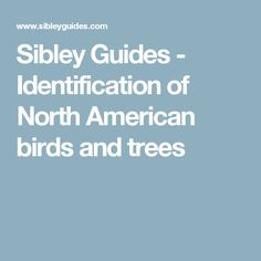 Sibley Guides - Identification of North American birds and trees